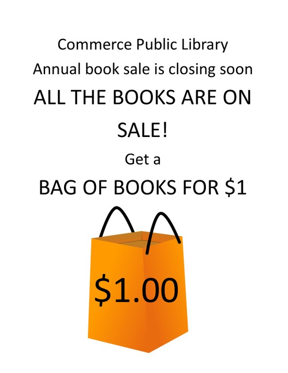 Book sale bag for a dollar.jpg