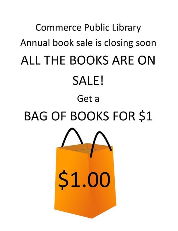 Book sale bag for a dollar.jpg