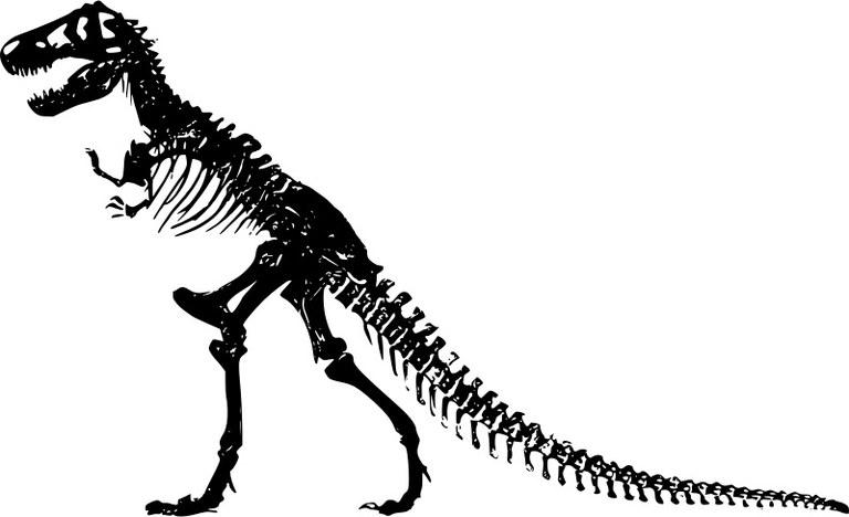 trex-skeleton-800px.jpg
